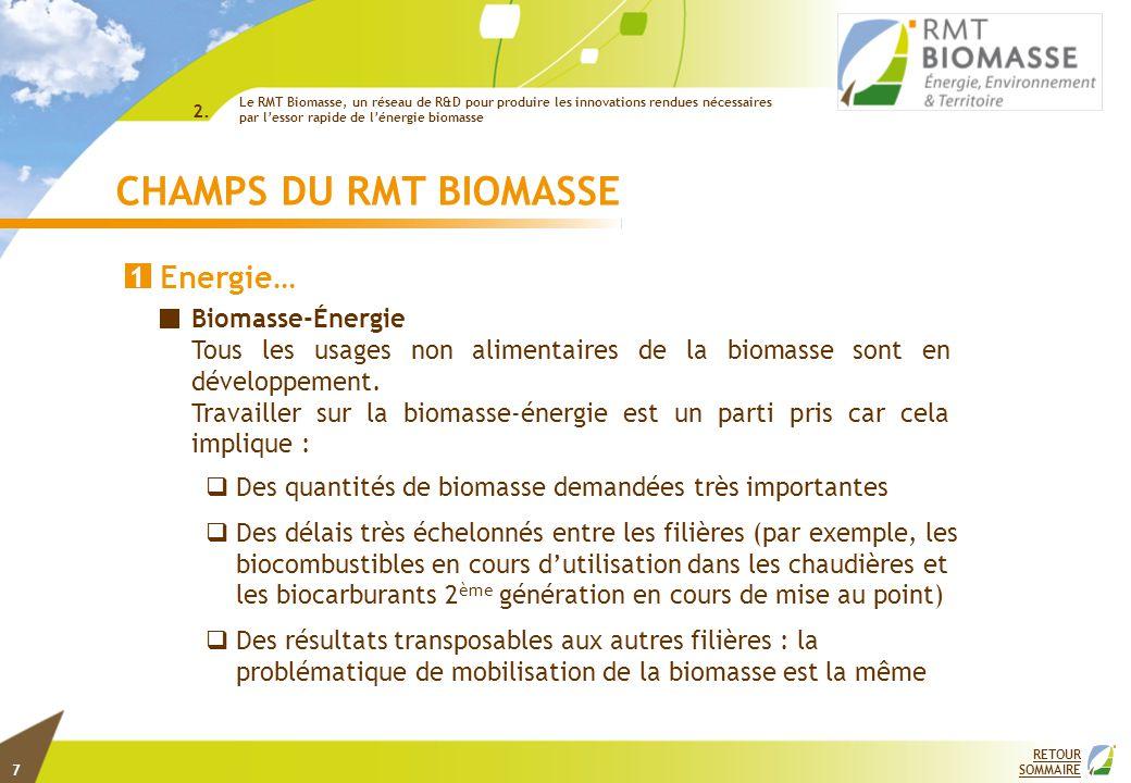 RETOUR SOMMAIRE CHAMPS DU RMT BIOMASSE Energie… 1 2. Biomasse-Énergie Tous les usages non alimentaires de la biomasse sont en développement. Travaille