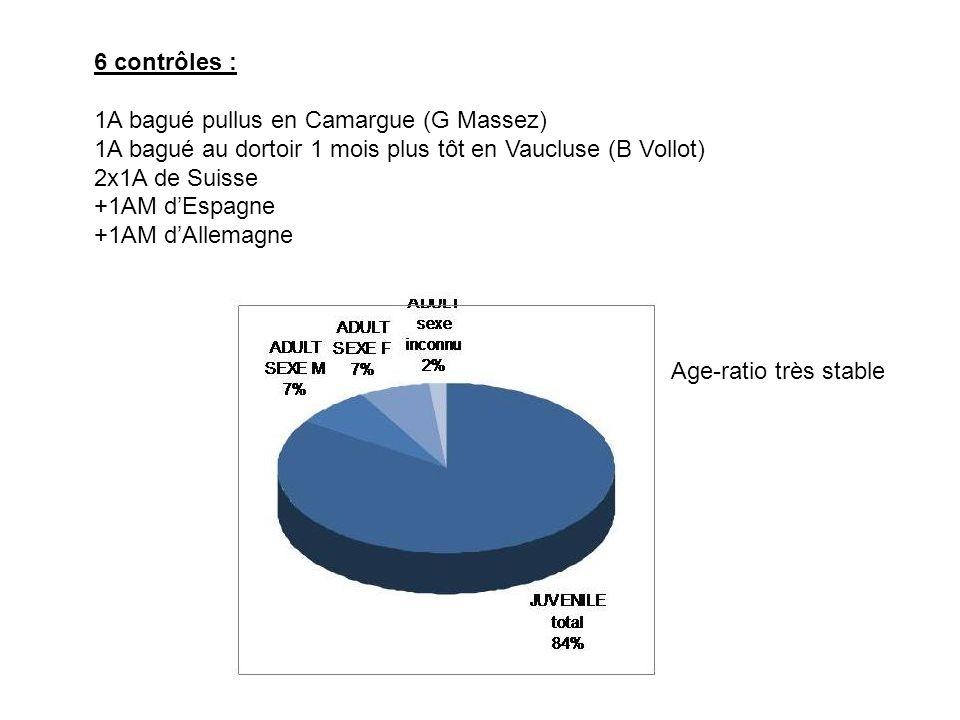 6 contrôles : 1A bagué pullus en Camargue (G Massez) 1A bagué au dortoir 1 mois plus tôt en Vaucluse (B Vollot) 2x1A de Suisse +1AM d'Espagne +1AM d'Allemagne Age-ratio très stable
