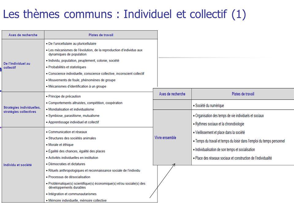 Les thèmes communs : Ethnique et responsabilité. (2)
