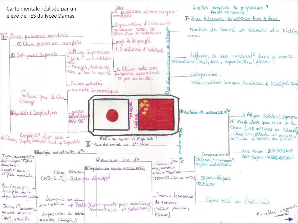 Carte mentale réalisée par un élève de TES du lycée Damas