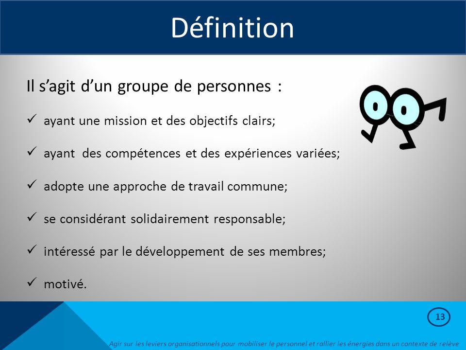 13 Définition Il s'agit d'un groupe de personnes : ayant une mission et des objectifs clairs; ayant des compétences et des expériences variées; adopte