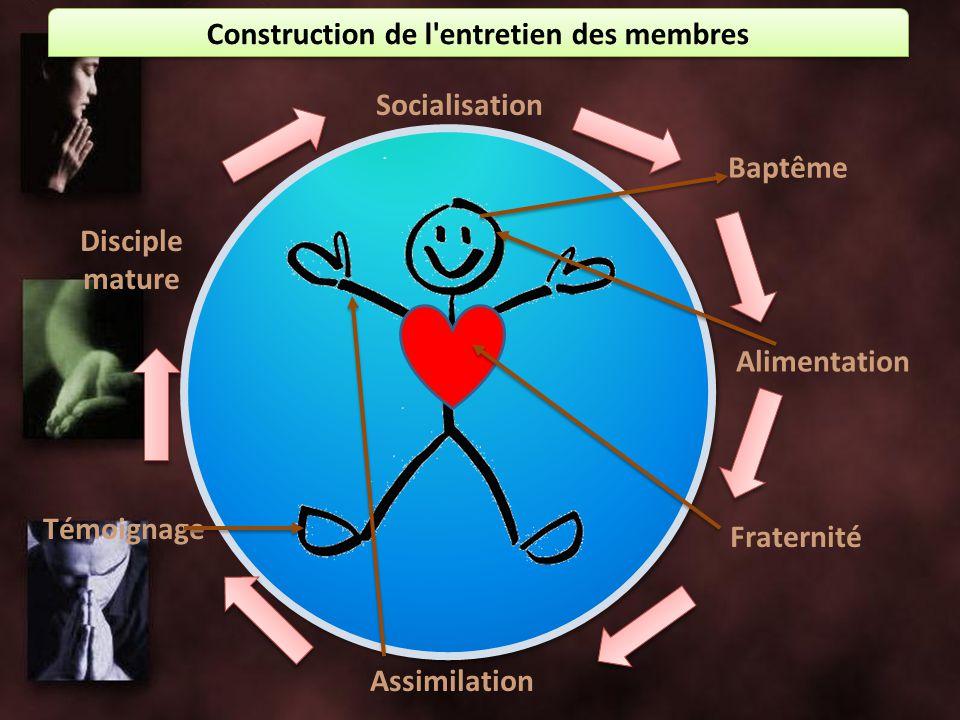 Construction de l'entretien des membres Socialisation Baptême Alimentation Assimilation Fraternité Témoignage Disciple mature