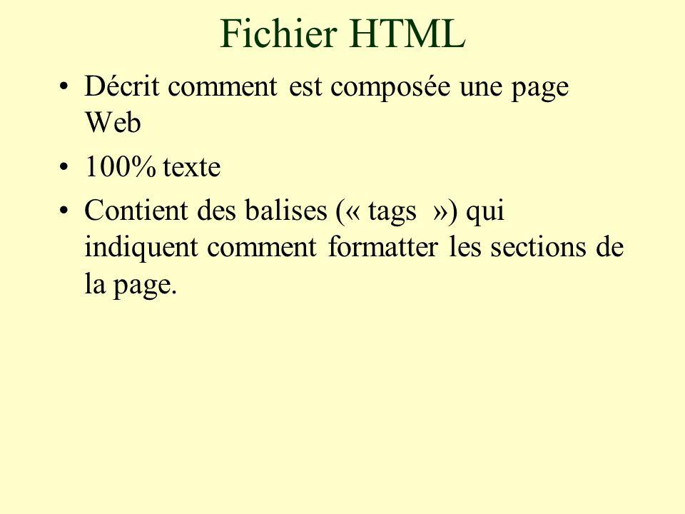 Fichier HTML Décrit comment est composée une page Web 100% texte Contient des balises (« tags ») qui indiquent comment formatter les sections de la page.