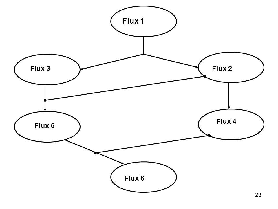 29 Flux 1 Flux 2Flux 3 Flux 4 Flux 5 Flux 6