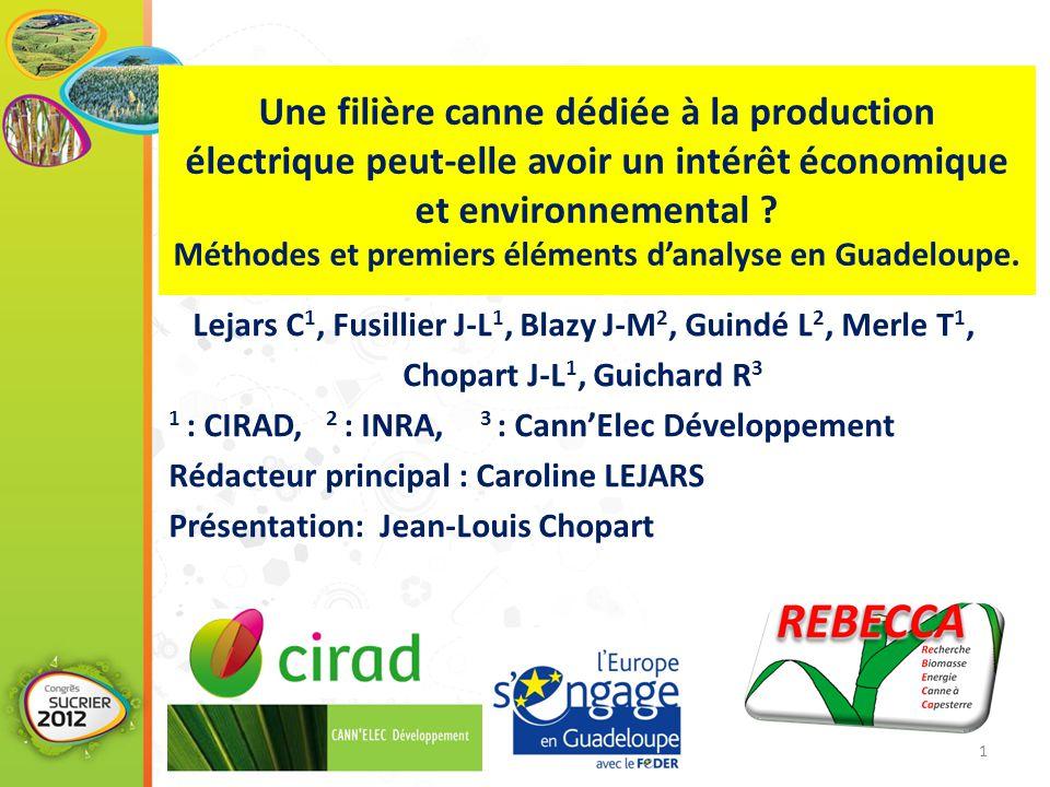 Une filière canne dédiée à la production électrique peut-elle avoir un intérêt économique et environnemental ? Méthodes et premiers éléments d'analyse