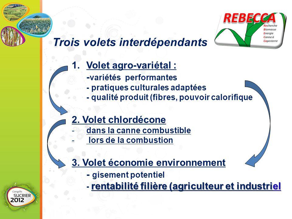 1.Volet agro-variétal : - variétés performantes - pratiques culturales adaptées - qualité produit (fibres, pouvoir calorifique 2. Volet chlordécone -d
