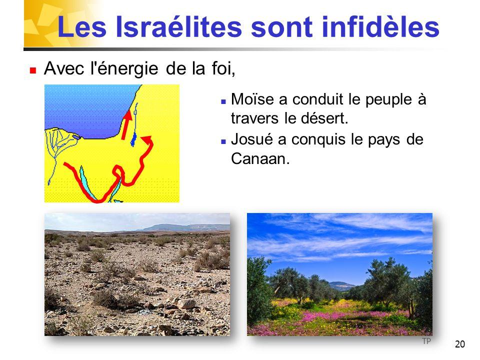 20 Les Israélites sont infidèles Avec l'énergie de la foi, Moïse a conduit le peuple à travers le désert. Josué a conquis le pays de Canaan. TP