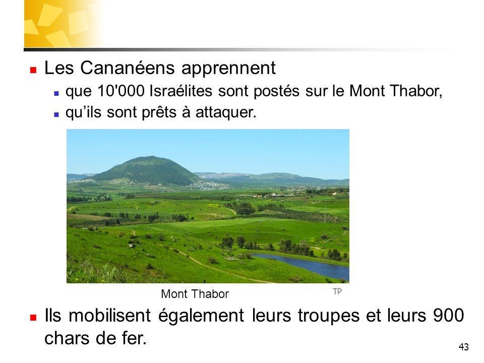 43 Les Cananéens apprennent que 10'000 Israélites sont postés sur le Mont Thabor, qu'ils sont prêts à attaquer. Ils mobilisent également leurs troupes
