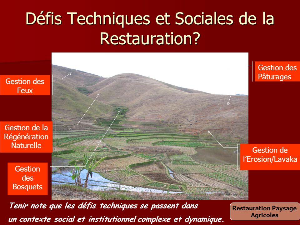 Défis Techniques et Sociales de la Restauration? Gestion des Feux Gestion de la Régénération Naturelle Gestion des Bosquets Gestion de l'Erosion/Lavak