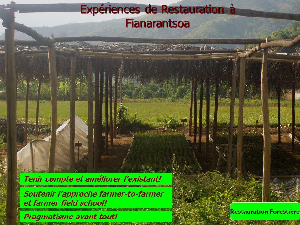 Expériences de Restauration à Fianarantsoa Restauration Forestière Tenir compte et améliorer l'existant! Pragmatisme avant tout! Soutenir l'approche f