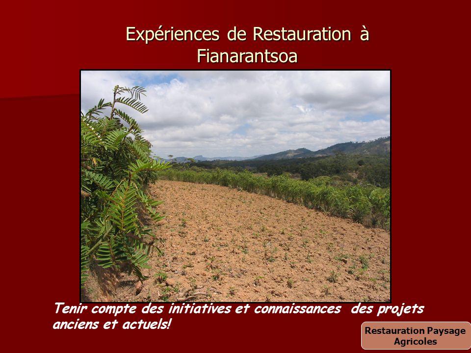 Expériences de Restauration à Fianarantsoa Tenir compte des initiatives et connaissances des projets anciens et actuels! Restauration Paysage Agricole
