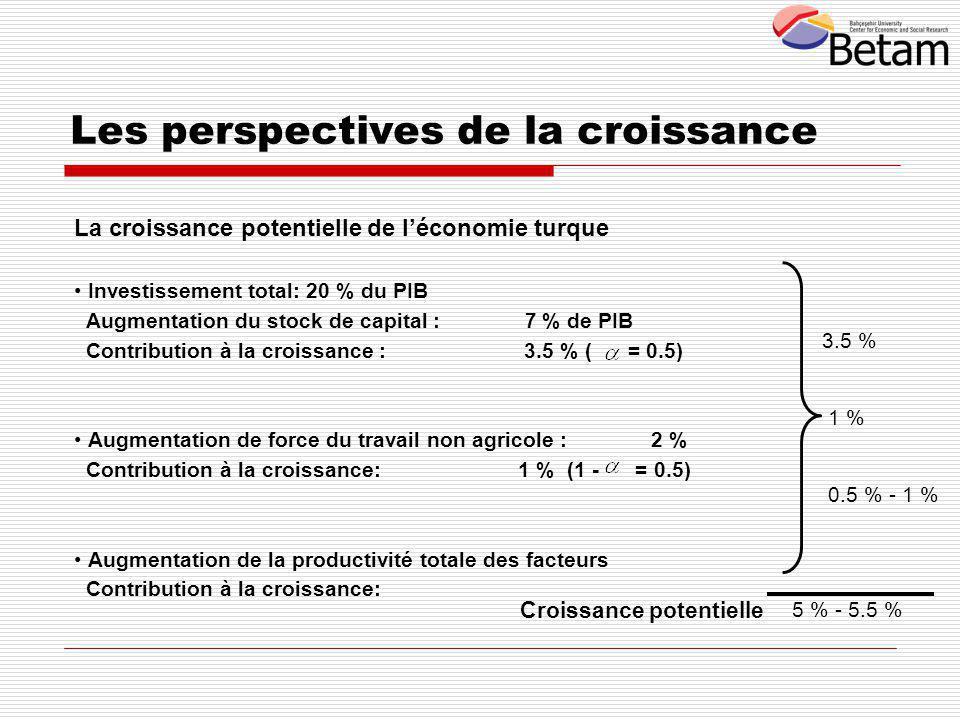 La croissance potentielle de l'économie turque Investissement total: 20 % du PIB Augmentation du stock de capital : 7 % de PIB Contribution à la croissance : 3.5 % ( = 0.5) Augmentation de force du travail non agricole : 2 % Contribution à la croissance: 1 % (1 - = 0.5) Augmentation de la productivité totale des facteurs Contribution à la croissance: 3.5 % 1 % 0.5 % - 1 % 5 % - 5.5 % Croissance potentielle