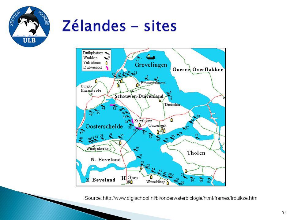Zélandes - sites Source: http://www.digischool.nl/bi/onderwaterbiologie/html/frames/frduikze.htm 34