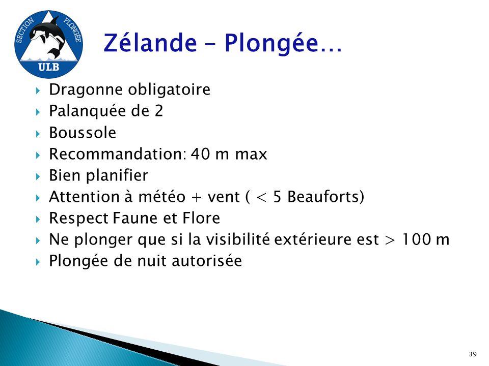 Zélande – Plongée…  Dragonne obligatoire  Palanquée de 2  Boussole  Recommandation: 40 m max  Bien planifier  Attention à météo + vent ( < 5 Bea
