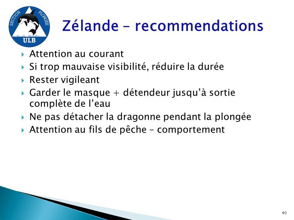 Zélande – recommendations  Attention au courant  Si trop mauvaise visibilité, réduire la durée  Rester vigileant  Garder le masque + détendeur jus