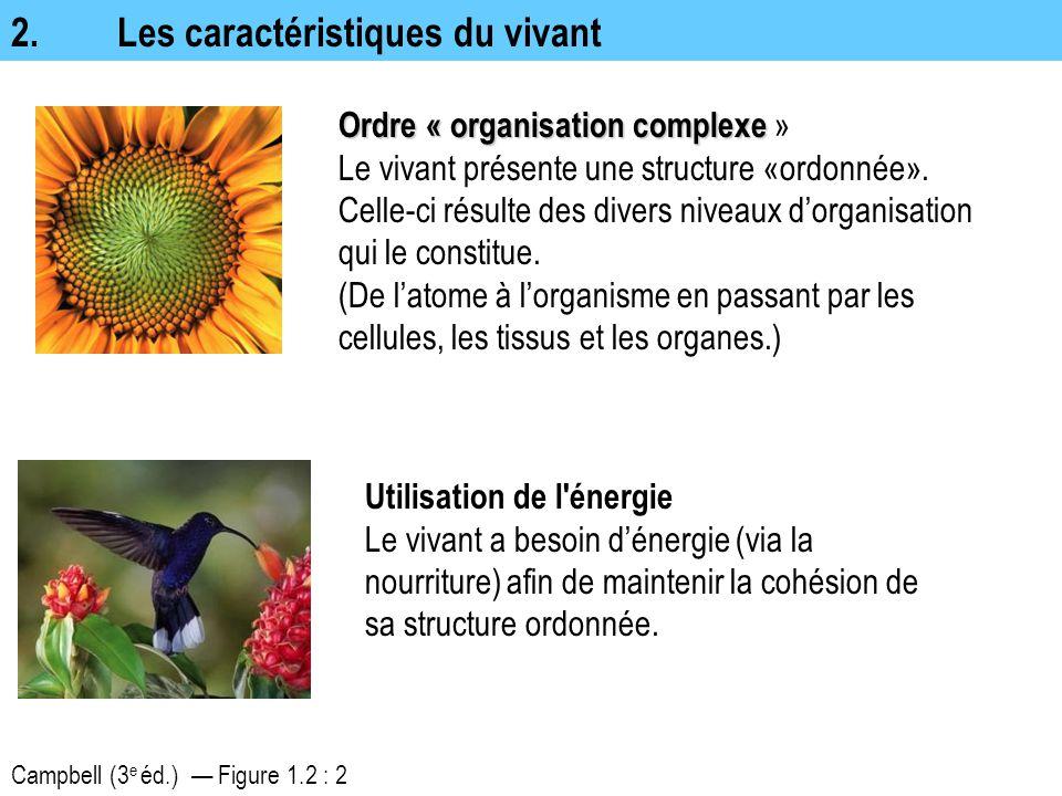 2.Les caractéristiques du vivant Campbell (3 e éd.) — Figure 1.2 : 2 Ordre « organisation complexe Ordre « organisation complexe » Le vivant présente