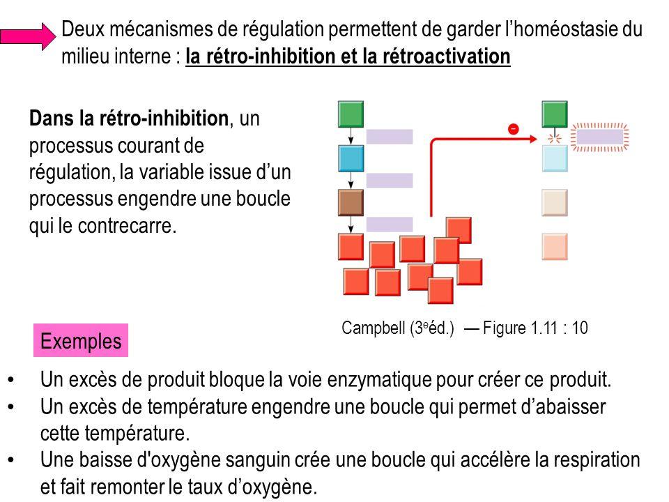 Deux mécanismes de régulation permettent de garder l'homéostasie du milieu interne : la rétro-inhibition et la rétroactivation Dans la rétro-inhibitio