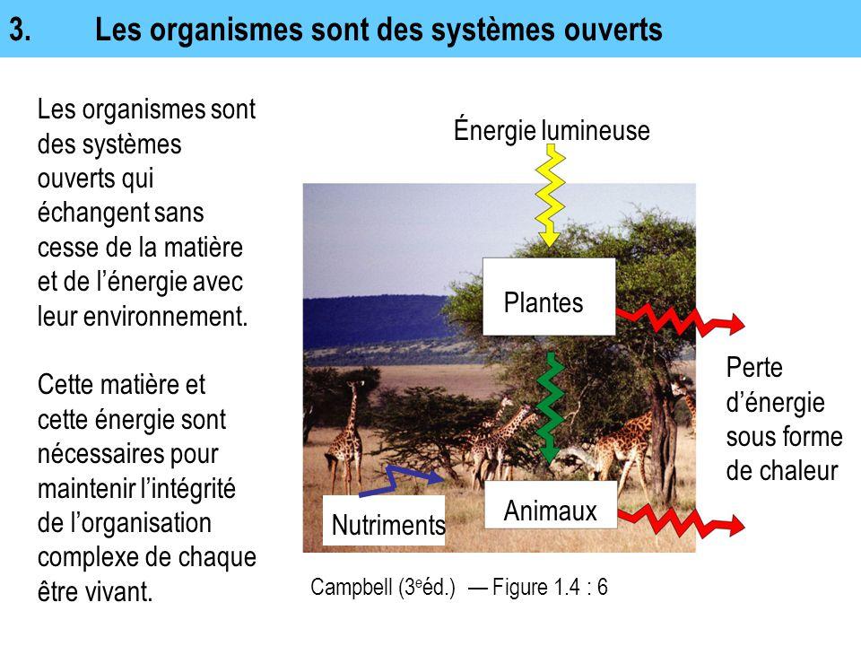 3.Les organismes sont des systèmes ouverts Les organismes sont des systèmes ouverts qui échangent sans cesse de la matière et de l'énergie avec leur e