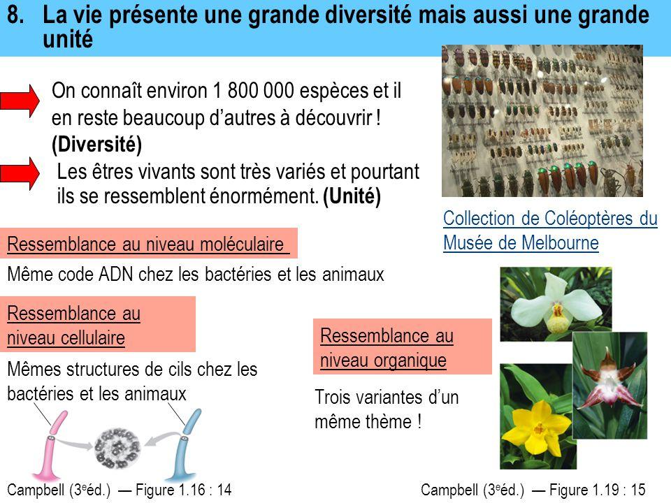 8.La vie présente une grande diversité mais aussi une grande unité On connaît environ 1 800 000 espèces et il en reste beaucoup d'autres à découvrir !