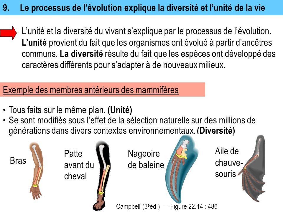 9. Le processus de l'évolution explique la diversité et l'unité de la vie L'unité et la diversité du vivant s'explique par le processus de l'évolution