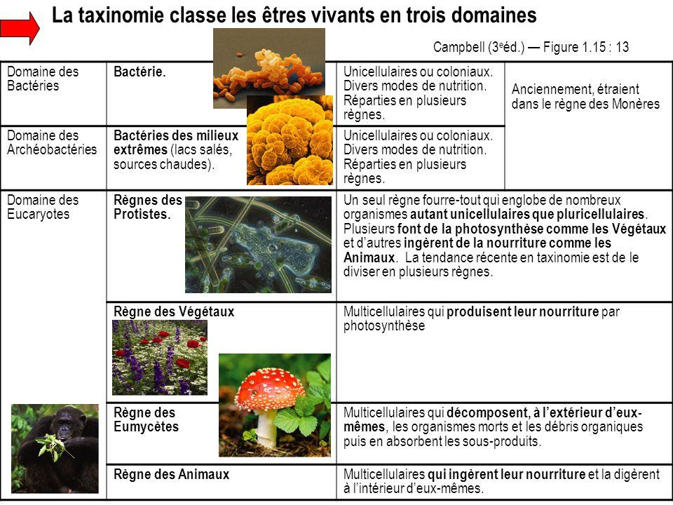 La taxinomie classe les êtres vivants en trois domaines Domaine des Bactéries Bactérie. Unicellulaires ou coloniaux. Divers modes de nutrition. Répart