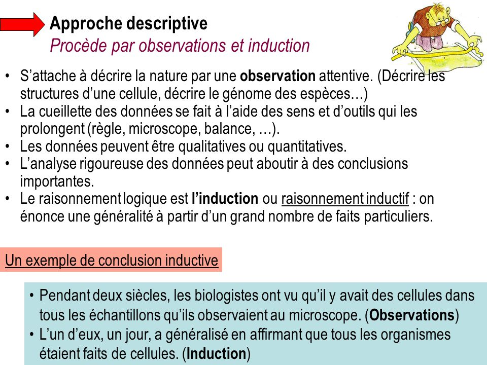 Approche descriptive Procède par observations et induction S'attache à décrire la nature par une observation attentive. (Décrire les structures d'une