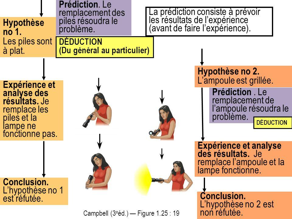 Campbell (3 e éd.) — Figure 1.25 : 19 Prédiction. Le remplacement des piles résoudra le problème. La prédiction consiste à prévoir les résultats de l'