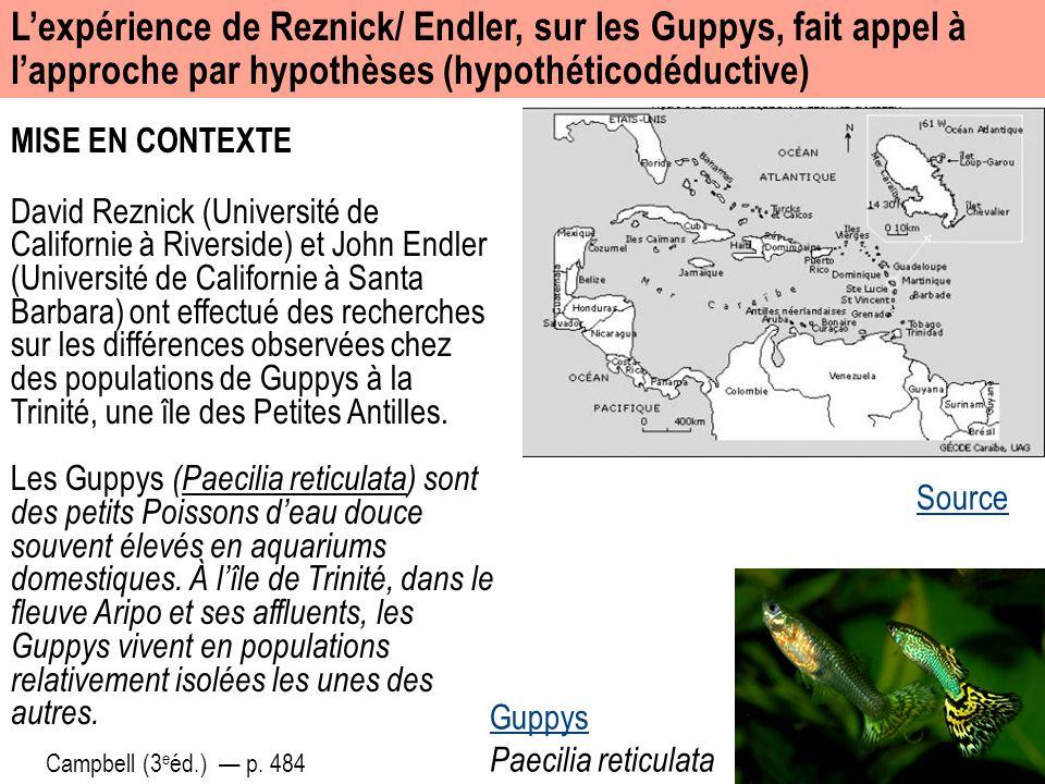 MISE EN CONTEXTE Guppys Paecilia reticulata L'expérience de Reznick/ Endler, sur les Guppys, fait appel à l'approche par hypothèses (hypothéticodéduct