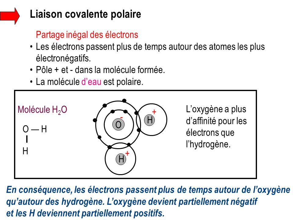 Liaison covalente polaire Partage inégal des électrons Les électrons passent plus de temps autour des atomes les plus électronégatifs. Pôle + et - dan