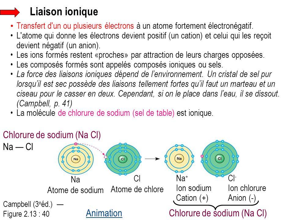 Liaison ionique Transfert d'un ou plusieurs électrons à un atome fortement électronégatif. L'atome qui donne les électrons devient positif (un cation)
