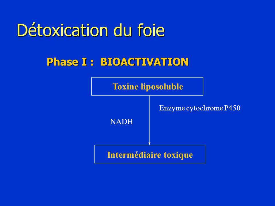 Détoxication du foie Phase I : BIOACTIVATION Toxine liposoluble Intermédiaire toxique Enzyme cytochrome P450 NADH