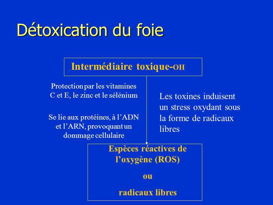 Détoxication du foie Intermédiaire toxique- OH Espèces réactives de l'oxygène (ROS) ou radicaux libres Les toxines induisent un stress oxydant sous la forme de radicaux libres Protection par les vitamines C et E, le zinc et le sélénium Se lie aux protéines, à l'ADN et l'ARN, provoquant un dommage cellulaire