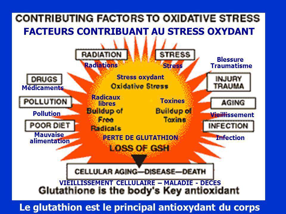 Le glutathion est le principal antioxydant du corps Mauvaise alimentation Infection Radiations FACTEURS CONTRIBUANT AU STRESS OXYDANT Stress Stress oxydant Radicaux libres Toxines PERTE DE GLUTATHION VIEILLISSEMENT CELLULAIRE – MALADIE - DECES Médicaments Pollution Blessure Traumatisme Vieillissement