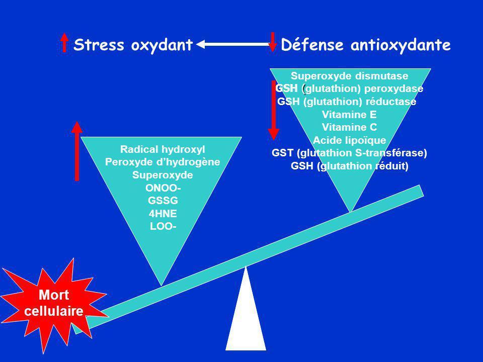 Stress oxydant Défense antioxydante Superoxyde dismutase ( GSH ( glutathion) peroxydase GSH (glutathion) réductase Vitamine E Vitamine C Acide lipoïque GST (glutathion S-transférase) GSH (glutathion réduit) Radical hydroxyl Peroxyde d'hydrogène Superoxyde ONOO- GSSG 4HNE LOO- Mort cellulaire