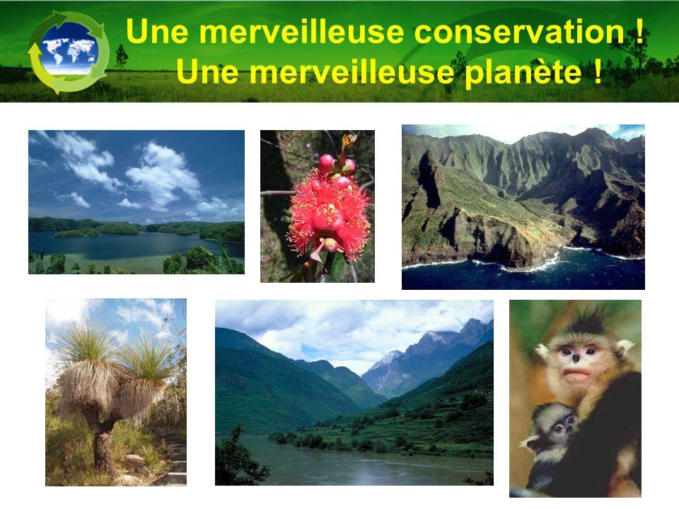 Une merveilleuse conservation ! Une merveilleuse planète !