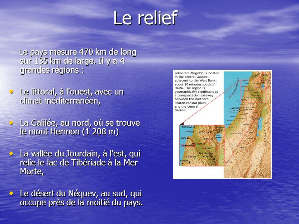 Le relief Le pays mesure 470 km de long sur 135 km de large. Il y a 4 grandes régions : Le pays mesure 470 km de long sur 135 km de large. Il y a 4 gr