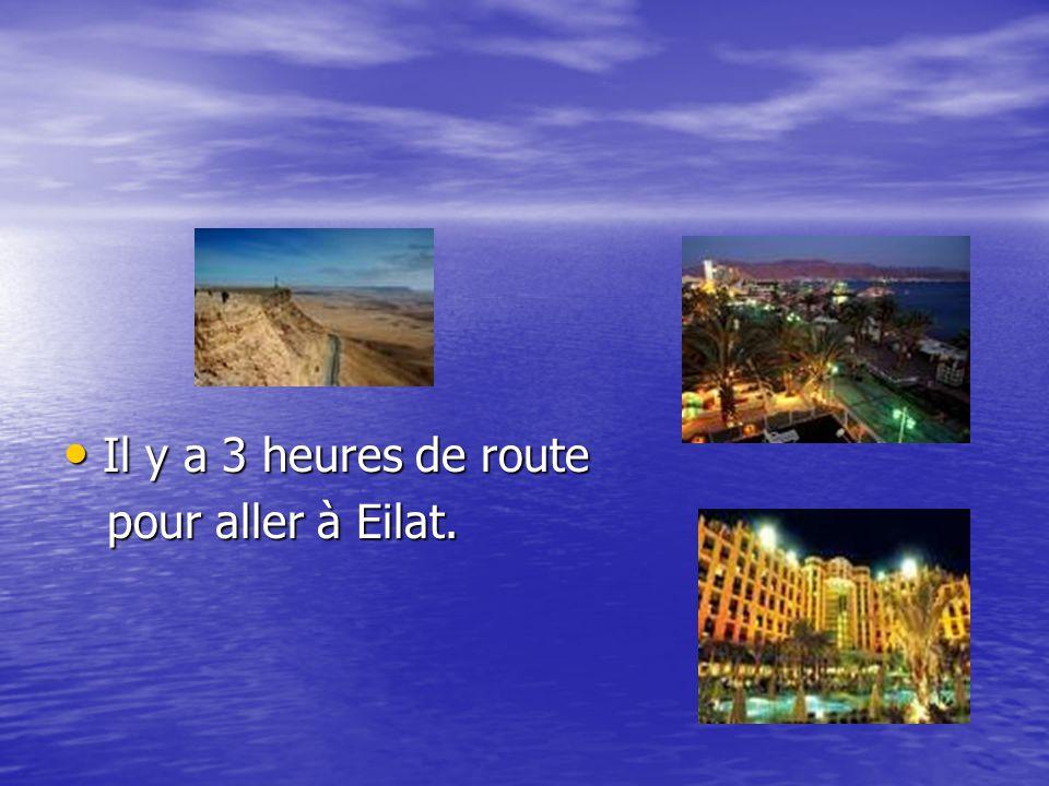 Il y a 3 heures de route Il y a 3 heures de route pour aller à Eilat. pour aller à Eilat.