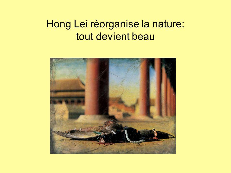 Hong Lei réorganise la nature: tout devient beau