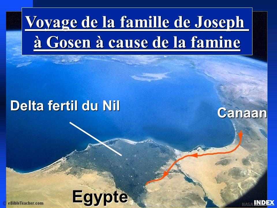 Voyage de la famille de Joseph à Gosen à cause de la famine Delta fertil du Nil Egypte Canaan © La famille de Joseph en Gosen INDEX