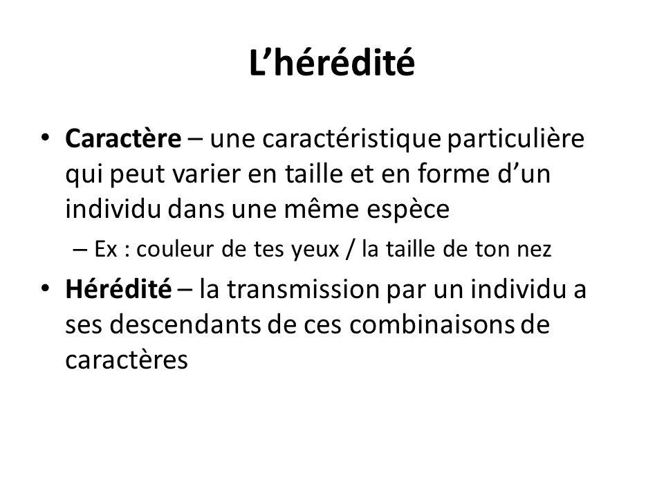 L'hérédité Caractère – une caractéristique particulière qui peut varier en taille et en forme d'un individu dans une même espèce – Ex : couleur de tes