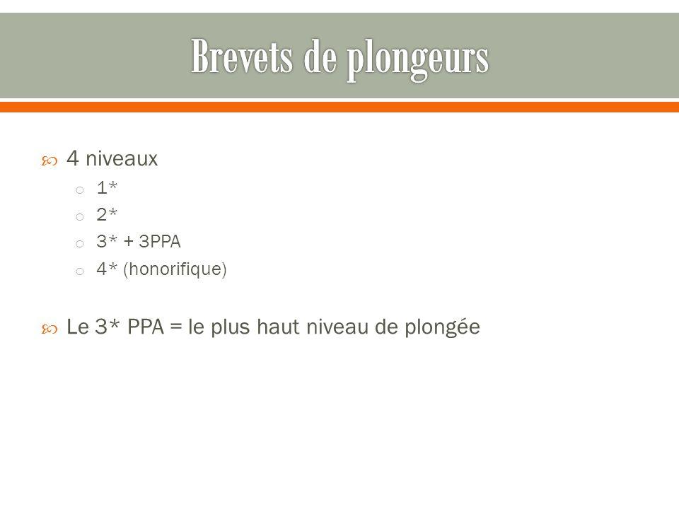  4 niveaux o 1* o 2* o 3* + 3PPA o 4* (honorifique)  Le 3* PPA = le plus haut niveau de plongée