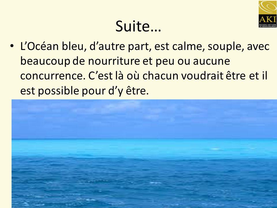 L'Océan bleu, d'autre part, est calme, souple, avec beaucoup de nourriture et peu ou aucune concurrence.
