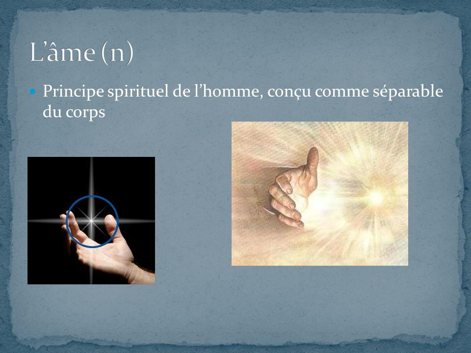 Principe spirituel de l'homme, conçu comme séparable du corps