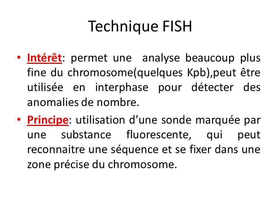 Technique FISH Intérêt: permet une analyse beaucoup plus fine du chromosome(quelques Kpb),peut être utilisée en interphase pour détecter des anomalies