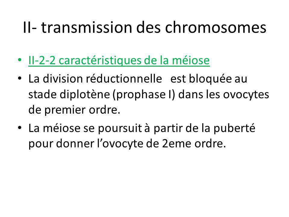 II- transmission des chromosomes II-2-2 caractéristiques de la méiose La division réductionnelle est bloquée au stade diplotène (prophase I) dans les