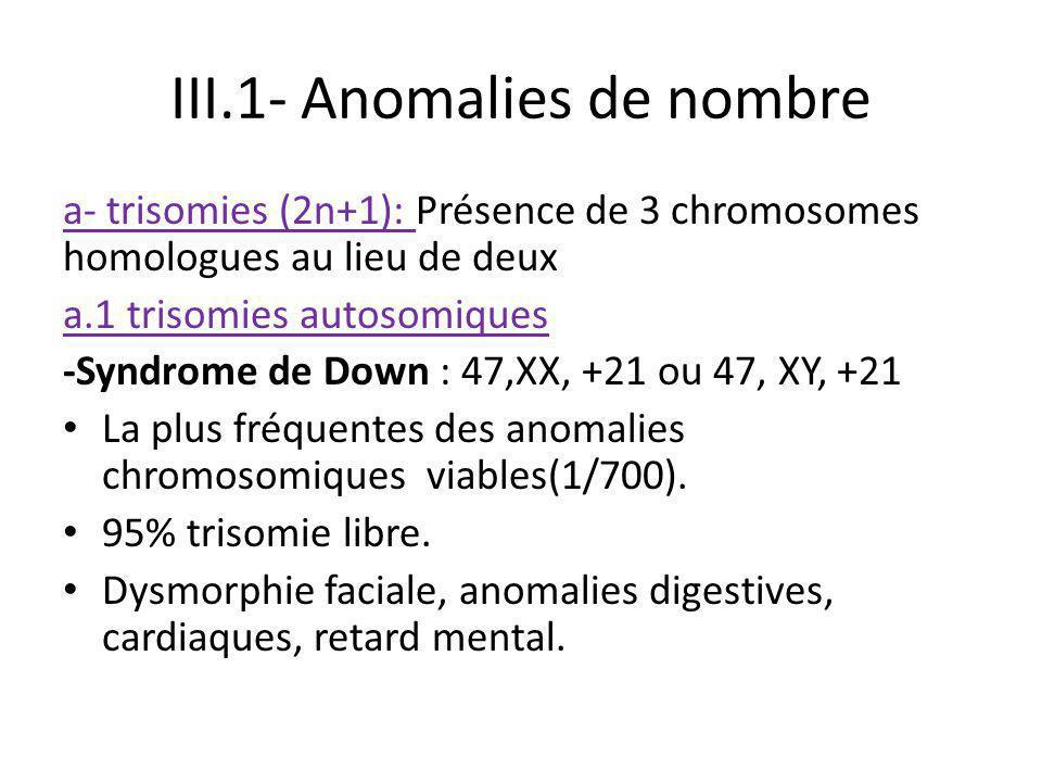 III.1- Anomalies de nombre a- trisomies (2n+1): Présence de 3 chromosomes homologues au lieu de deux a.1 trisomies autosomiques -Syndrome de Down : 47