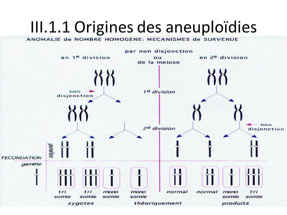 III.1.1 Origines des aneuploïdies Non disjonction à la première ou deuxième division de méiose.