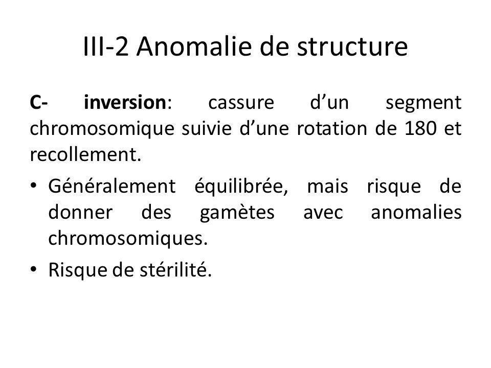 III-2 Anomalie de structure C- inversion: cassure d'un segment chromosomique suivie d'une rotation de 180 et recollement. Généralement équilibrée, mai