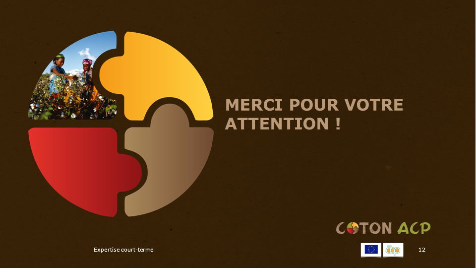 MERCI POUR VOTRE ATTENTION ! Expertise court-terme12