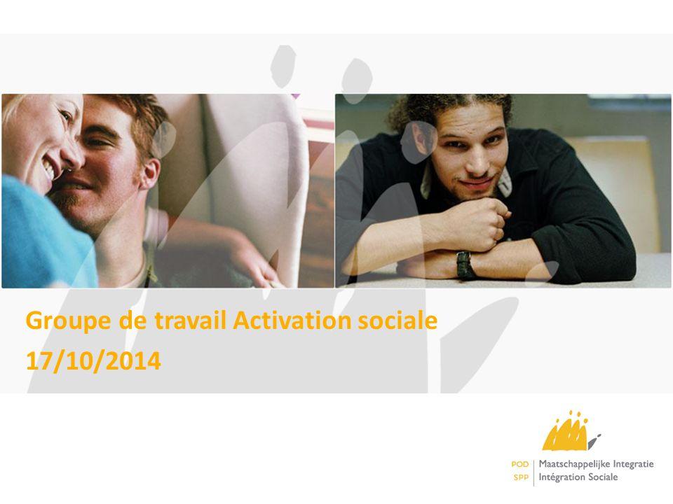 Groupe de travail Activation sociale 17/10/2014